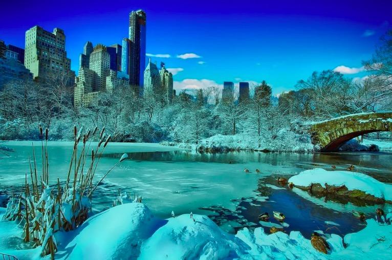 Central Park en hiver