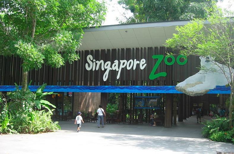 Photo du zoo de Singapour