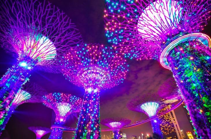 Photo du Gardens by The Bay à Singapour