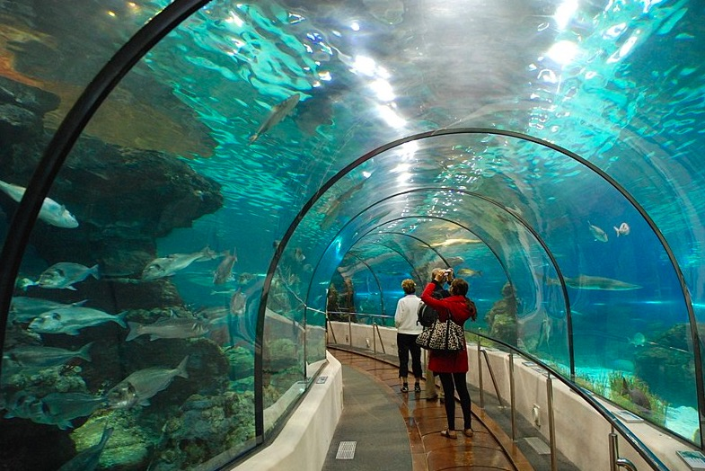 L'Aquarium à Barcelone