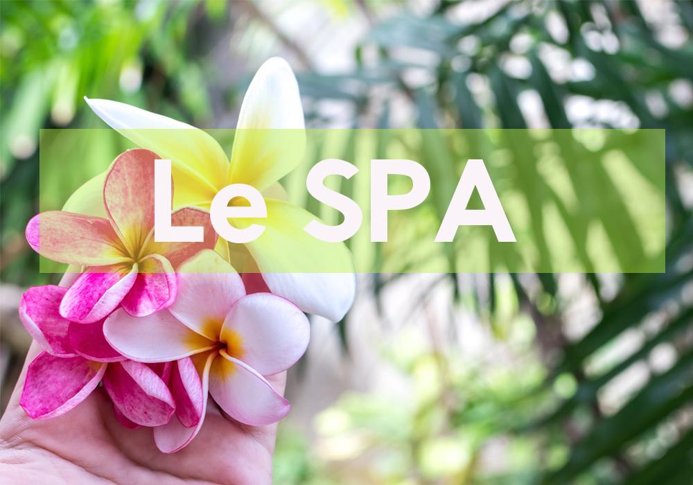 Villa Delisle: Le SPA Garden